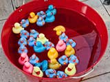 Colorful ducks await playful kids. © Robert Gary