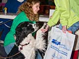 Therapy dogs shared their love with event visitors. © Denise Gary